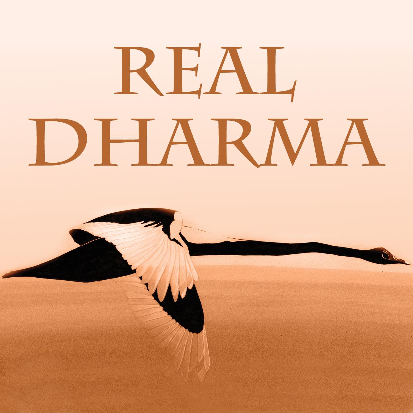 Real Dharma
